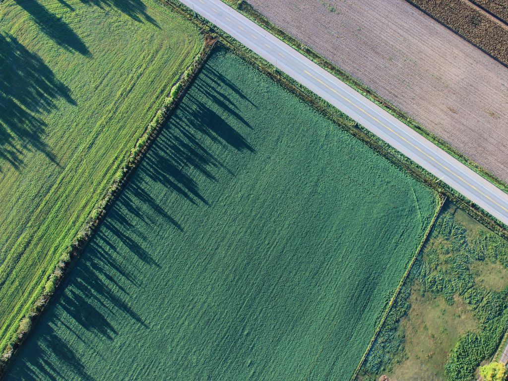 Top down view of a narrow country road, next to farmland.