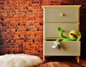 kermit the frog in a drawer