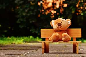 Brown Teddy Bear on a Brown Bench