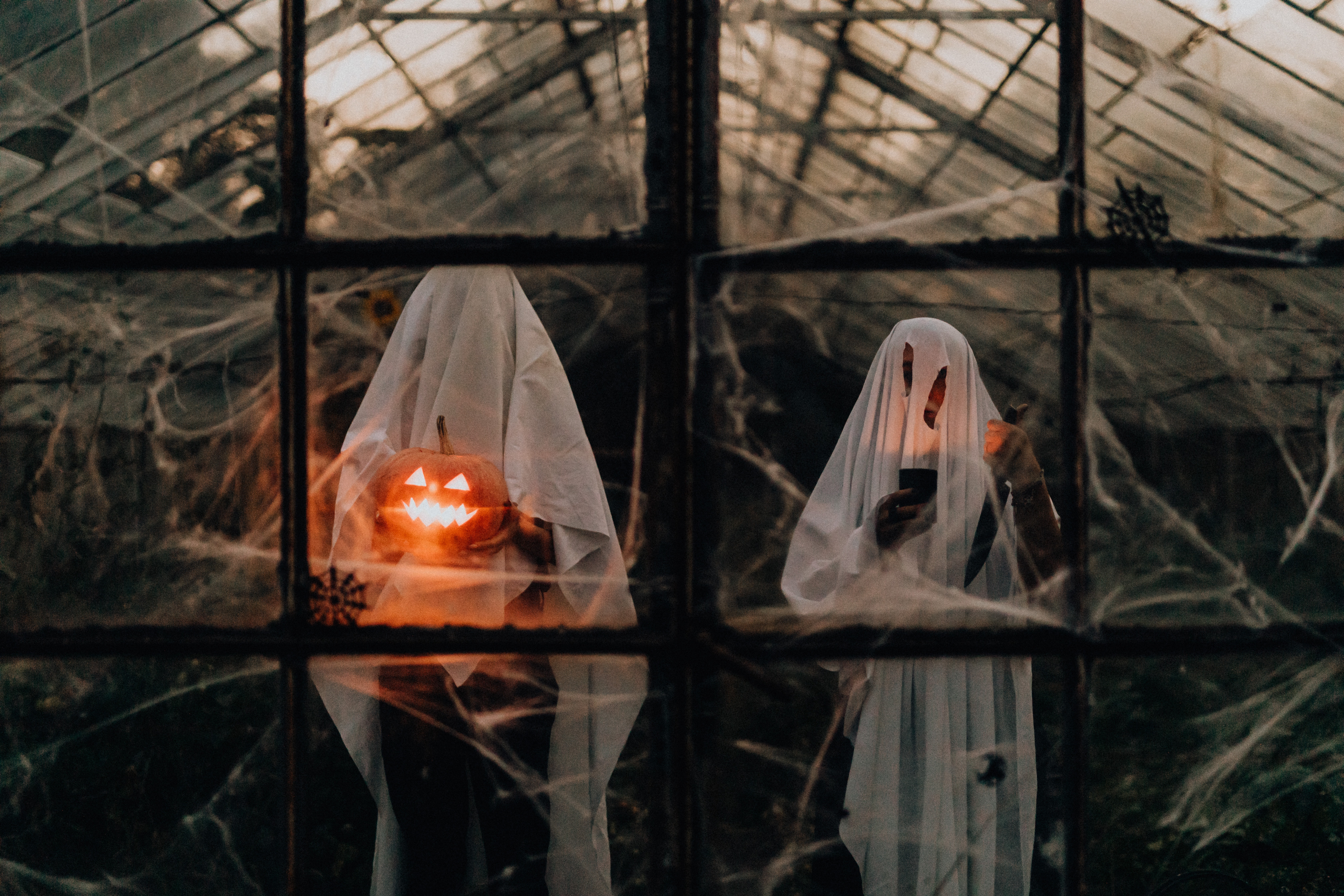 Ghosts in a greenhouse