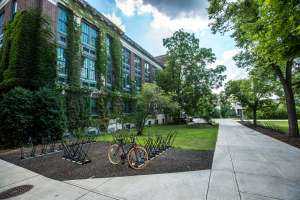 find a good school after moving that has plenty of greenery