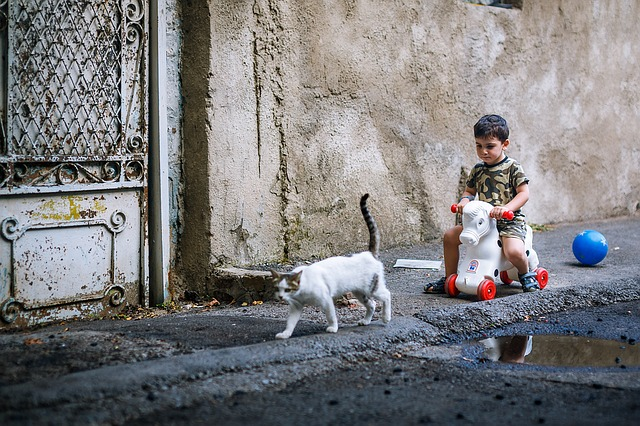 a child playing in the street